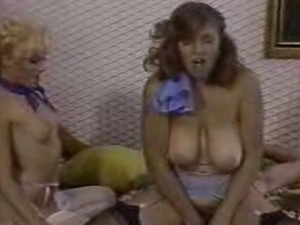 Compilation of the Hottest Vintage Porn Scenes