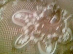 3ors ysawer khalou w hiya bihdoum noum w hiya nayma