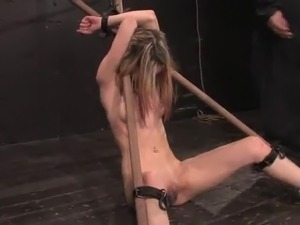 Calico has Her cunt Toyed While Being Immobilized