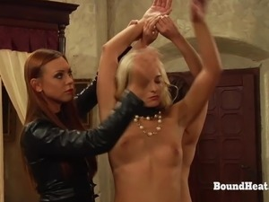 The Education of Erica:Adela As Mistress In Reverse Roleplay